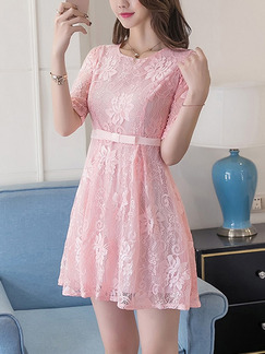 Pink Fit & Flare Above Knee Plus Size Lace Dress for Casual Party Evening