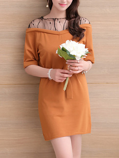 Apricot Shift Above Knee Plus Size Lace Dress for Casual Office Party Evening