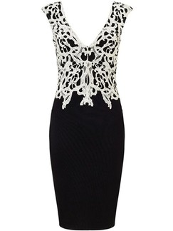 Black and White Bodycon V Neck Above Knee Lace Plus Size Dress for Party Cocktail Evening