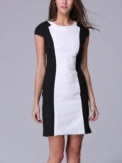 Black and White Sheath Above Knee Plus Size Dress for Casual Evening Office Special Offer
